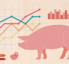 2019 – một năm bất ổn cho ngành chăn nuôi heo toàn cầu